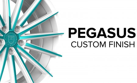 Pegasus - Custom Finish