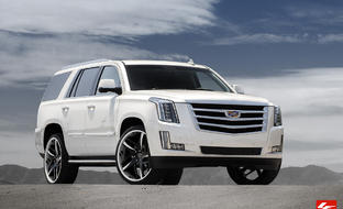 2015 Cadillac Escalade on LF-746 Bavaria, Custom Finish